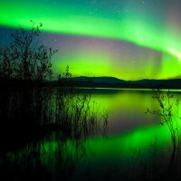 Aurora Borealis & Boreale Ranch with Dog Sledding