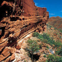 5 Day Alice, Uluru & Kings Canyon Adventure Escorted Tour