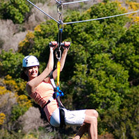 Catalina Island & Zip Line Eco Day Tour