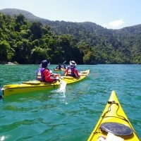 Half Day Guided Kayak Trip, Queen Charlotte Sound