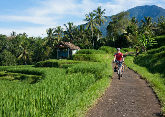 Mountain bike riding, Ubud Bali