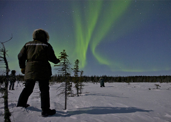 Photographers in winter gear standing on the snow, was two bright-green Aurora Borealis lines across the sky