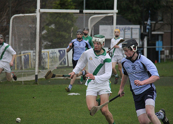 The sport of Hurling